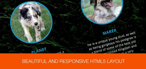 One-Page Dog Breeding Business HTML Website - Responsive