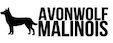 Avonwolf Malinois Beeder