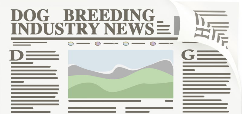 Dog Breeding Industry News