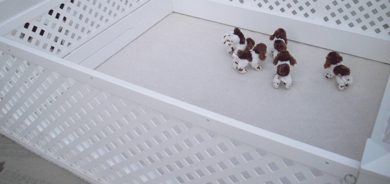 Dog Whelping Nest Home Made