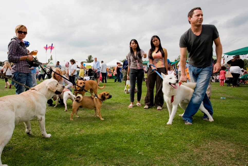 Fun Dog Show at Peckham Rye