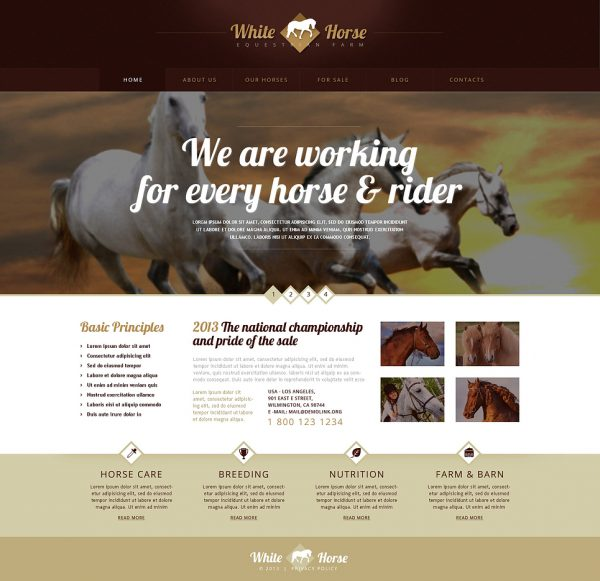Gorgeous Horses WordPress Theme by Template Monster