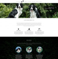 One-Page Dog Breeding Website Template Screenshot
