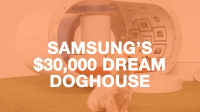 Samsung's Dream Doghouse at Crufts!