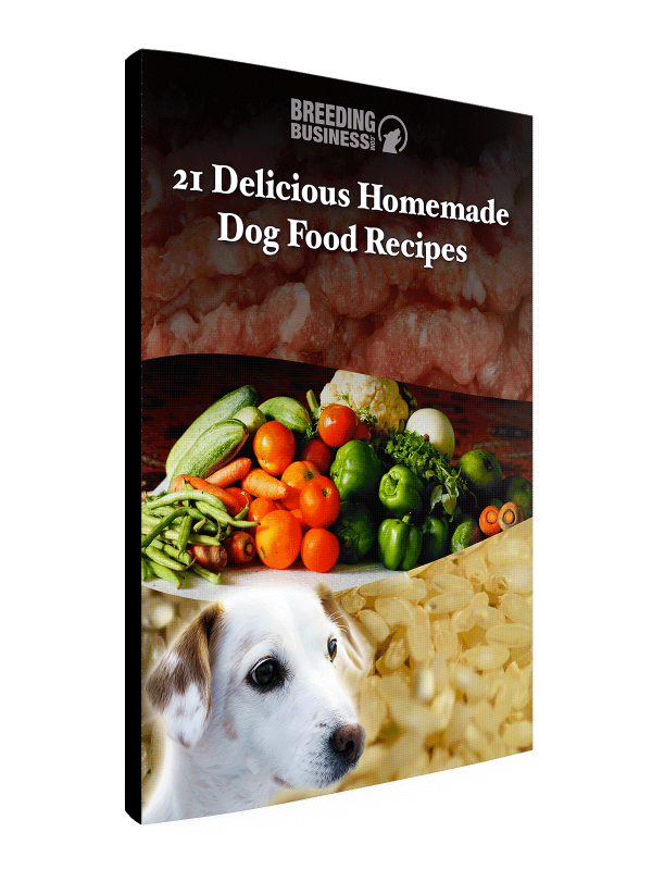 21 Delicious Homemade Dog Food Recipes