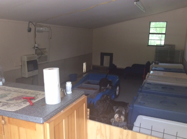 Inside Findell Kennels' Main Kennel
