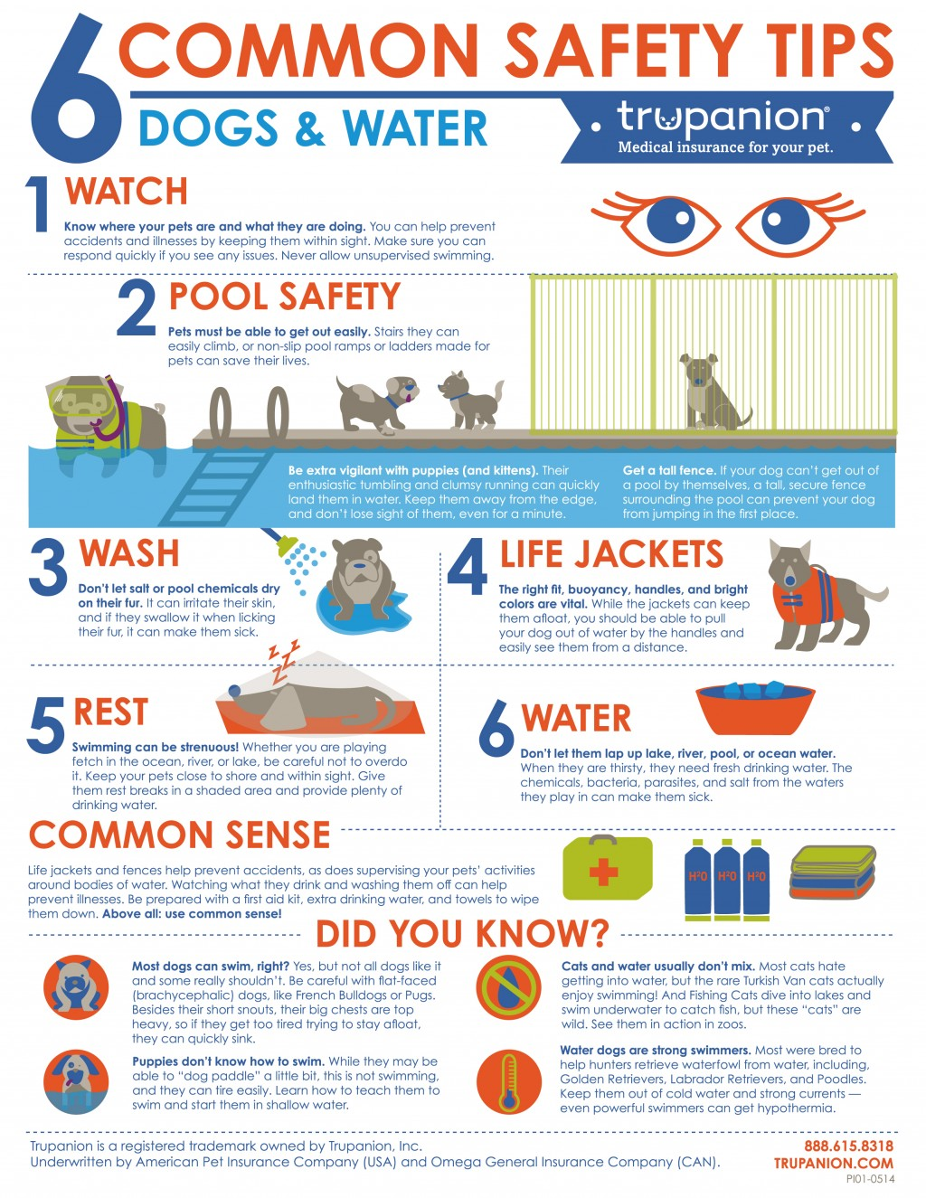 After Fire... Water Safety Tips & Information For Pooches