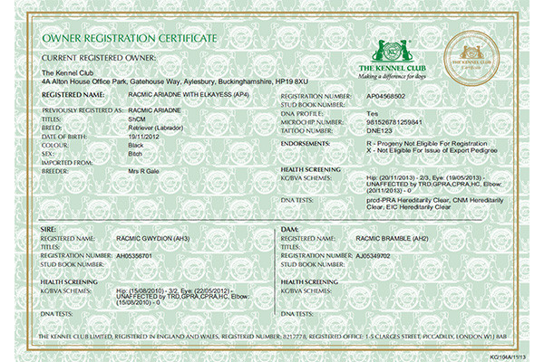 AKC Owner Registration Certificate
