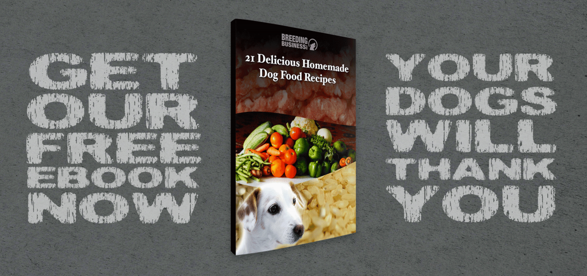 21 Delicious Homemade Dog Food Recipes! (Free eBook)