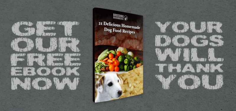 21 Delicious Homemade Dog Food Recipes! (Free eBook)