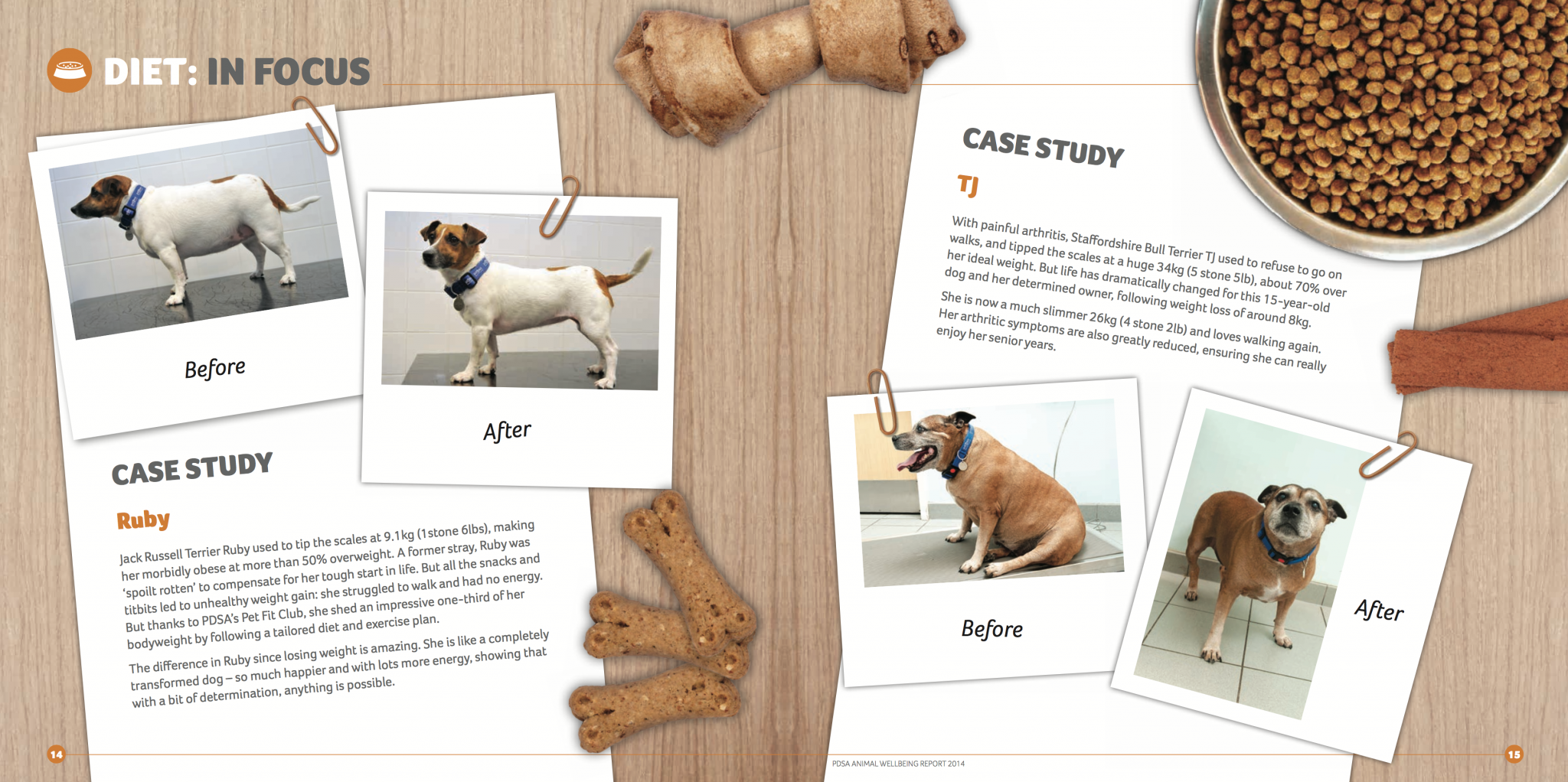 breeders pet food case study How pedigree turned doing good for dogs into good marketing for dog food more than buying some dog food–it was about helping other dogs studies that show.
