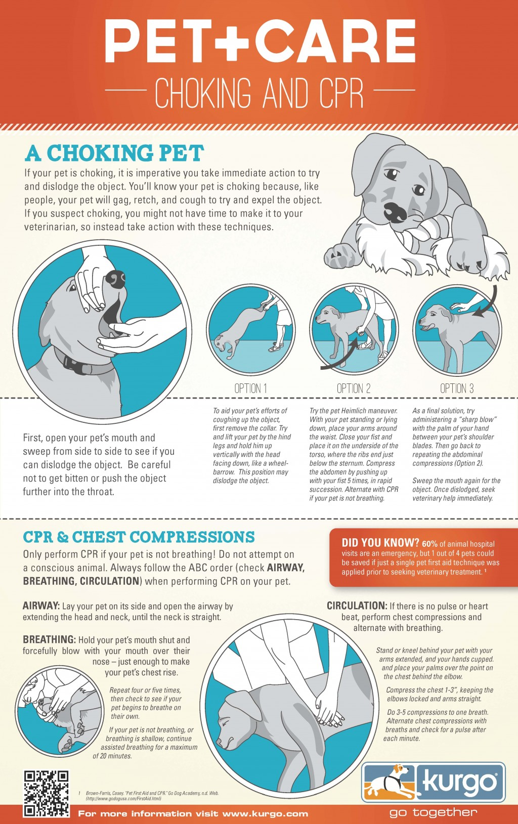 First-aid & CPR For a Choking Dog