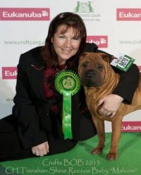 Joy at Crufts with her Shar-Pei dog