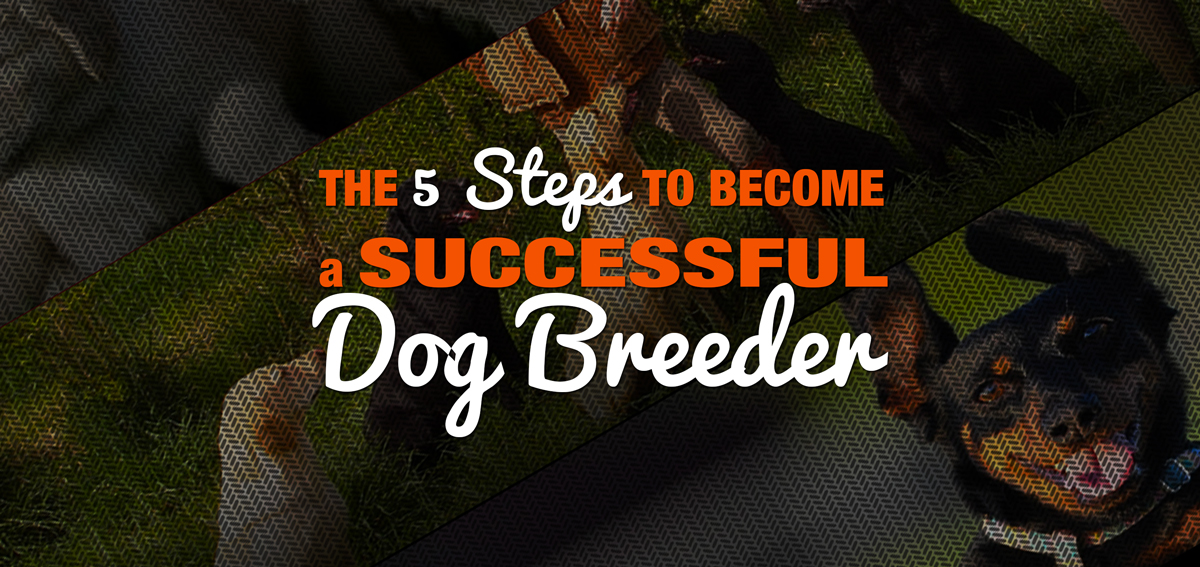 genetics and breeding strategies essays for the dog breeder