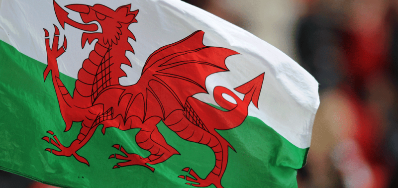 Welsh Flag And Dog Breeding