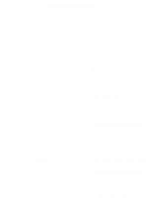 Breedr for WordPress - Logo Dog Breeding Plugin