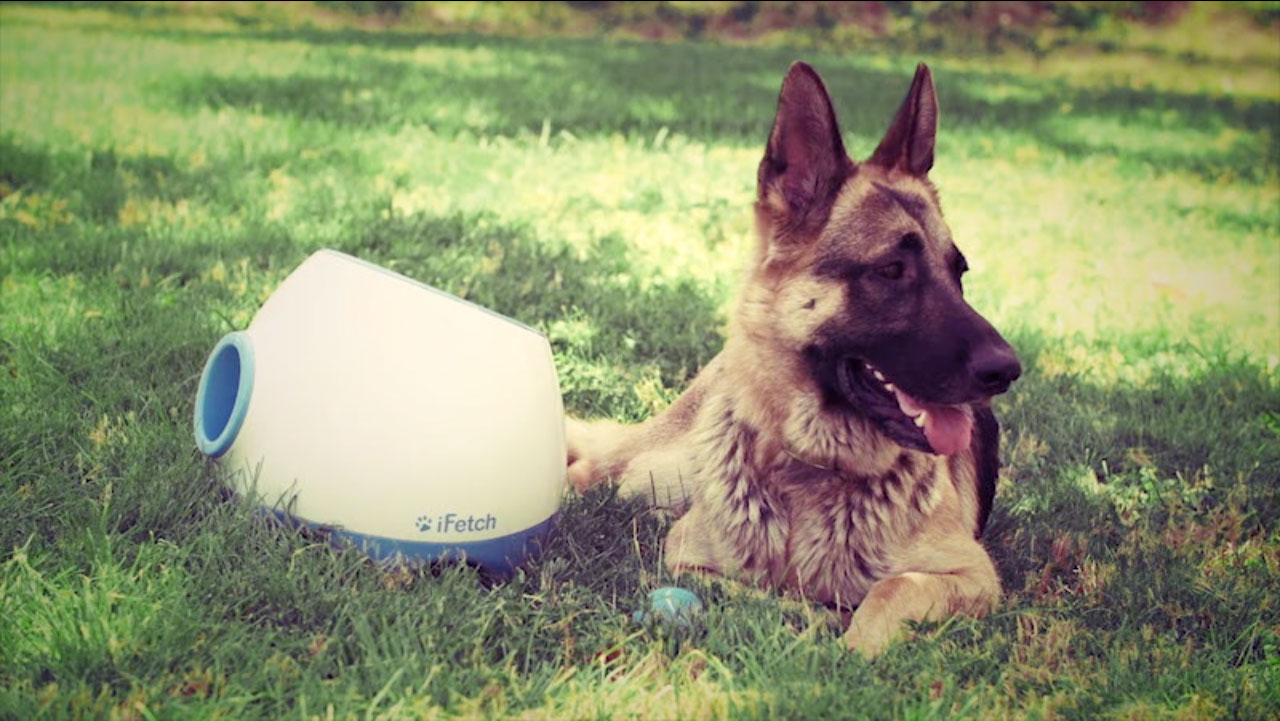 iFetch Too Ball Launcher for Large Dogs