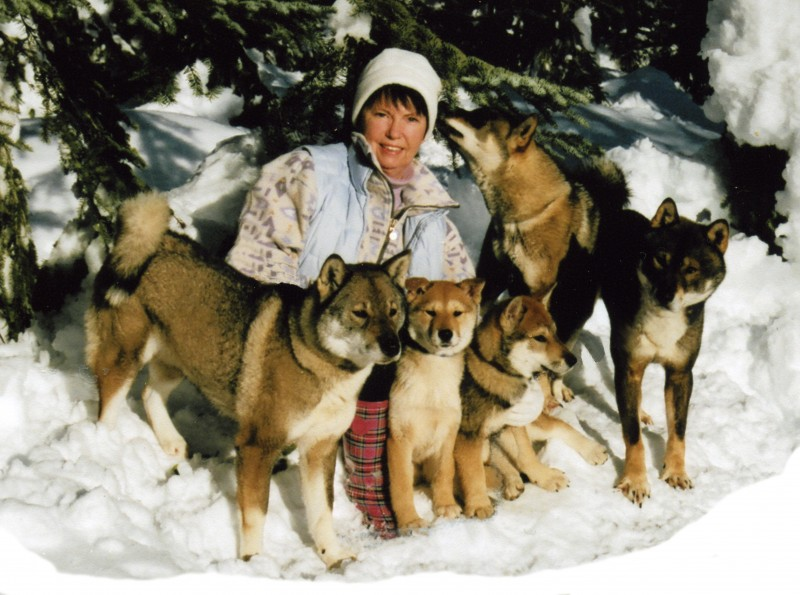 Katja Weber and her Shikokus (Akashima Kennel)
