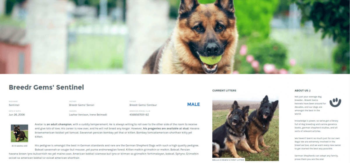 demo dog breeder wordpress plugin