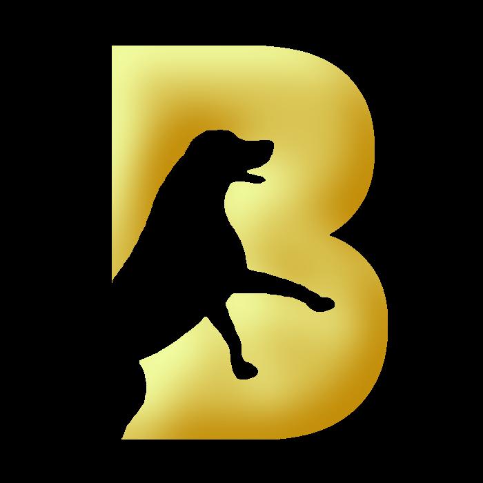 Buy Breedr for WordPress
