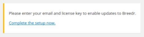 WordPress Lkicense Key