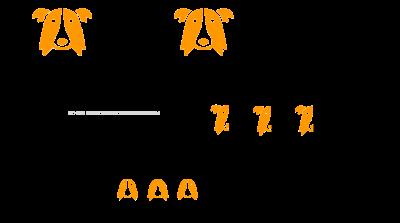 f1 backbred f1b hybrid dog
