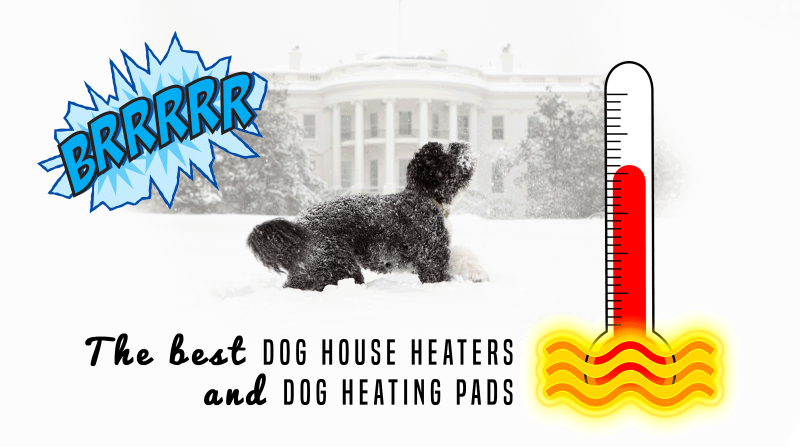 best dog house heaters and dog heating pads