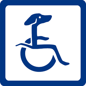 disabled dogs and handicapped puppies