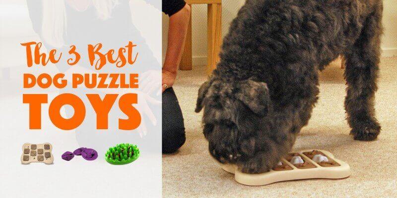best dog puzzle toys