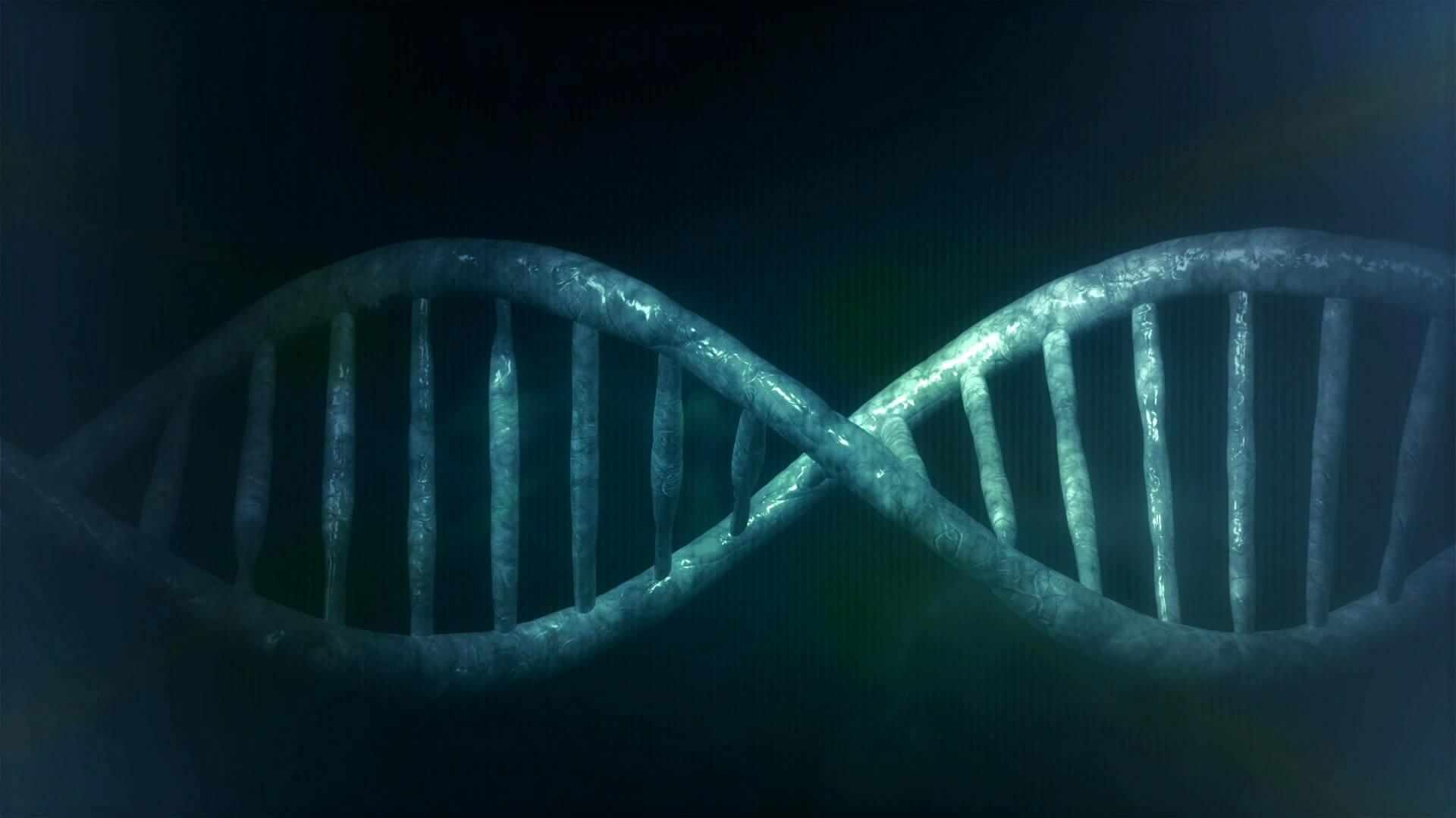 Cells, DNA, Chromosomes & Genes