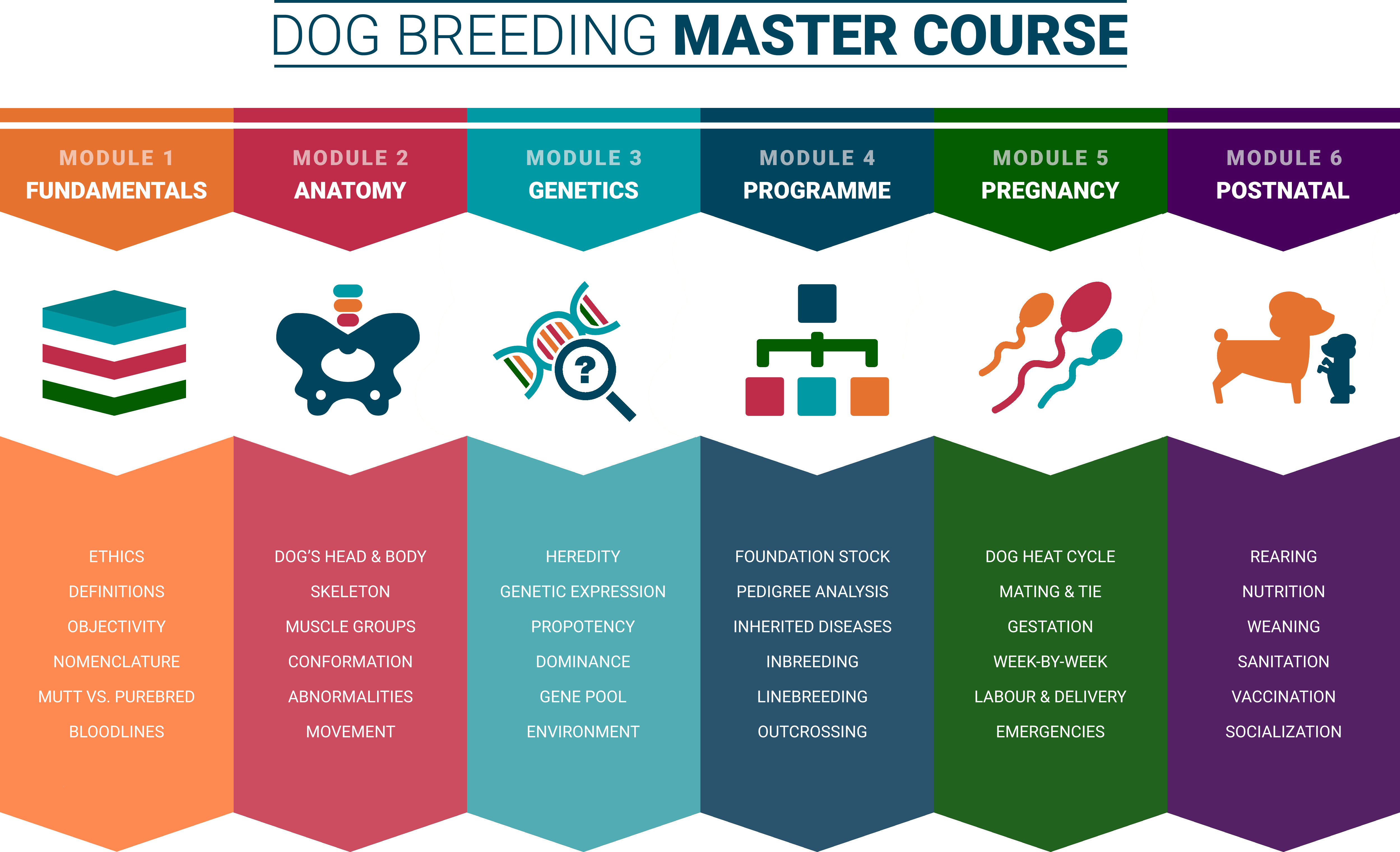 Dog Breeding Master Course Modules