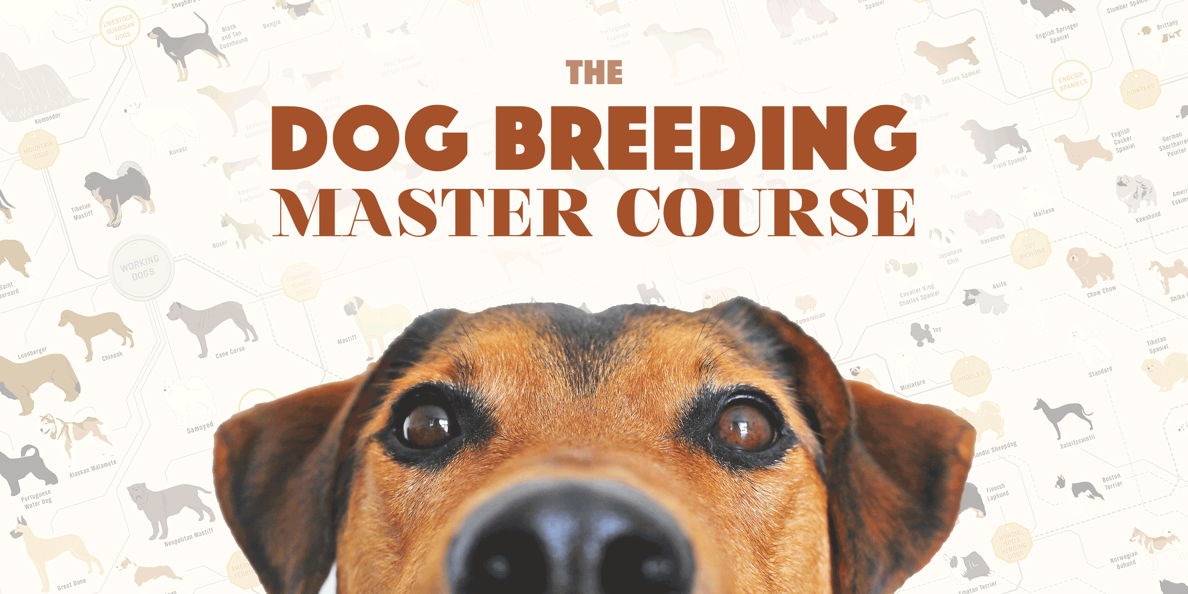 dog breeding master course