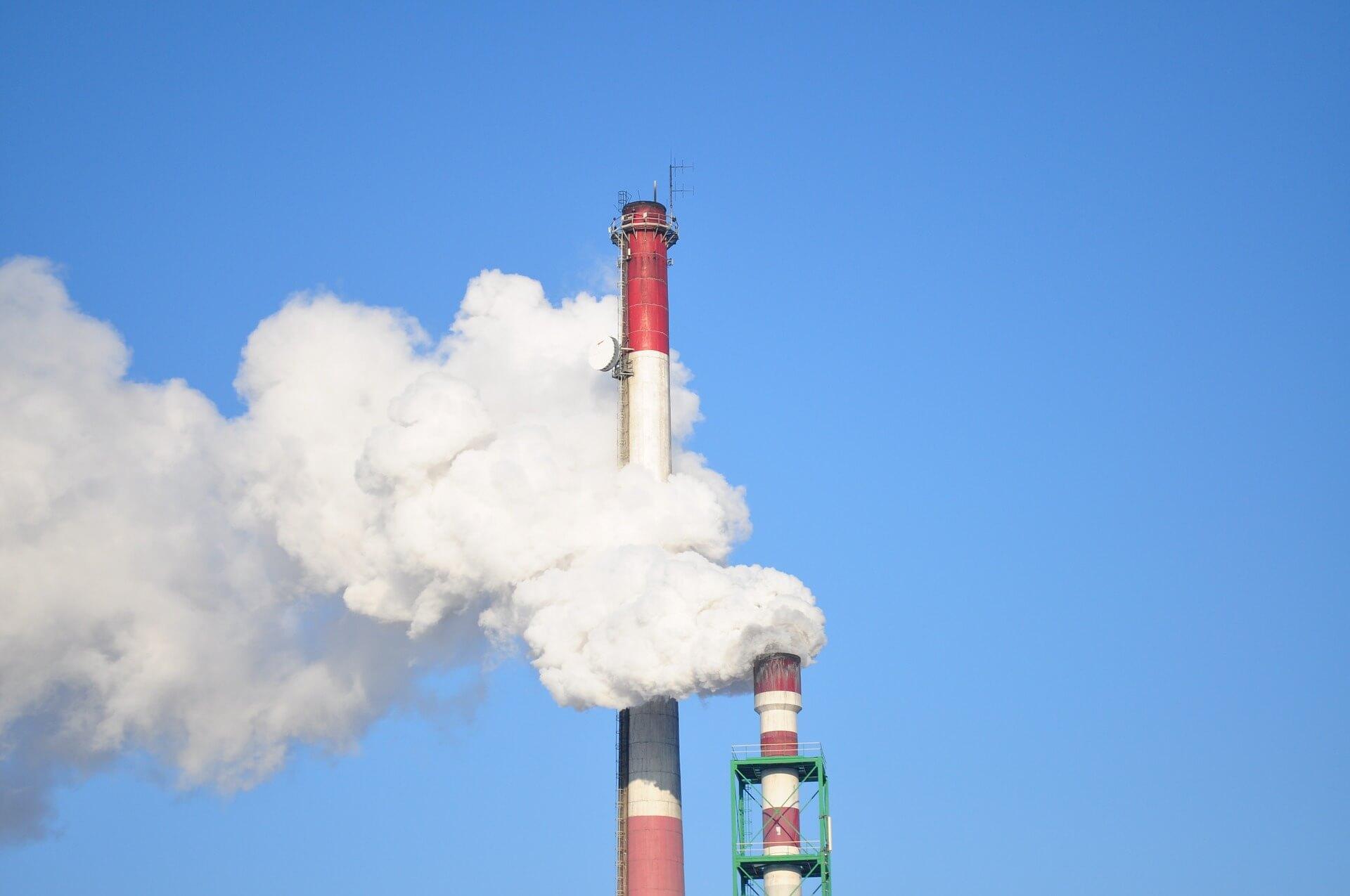 Genetic & Environmental Influences