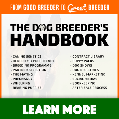 Breeding Father to Daughter Dogs — Health Risks & Benefits