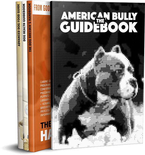 american bully ebook guide