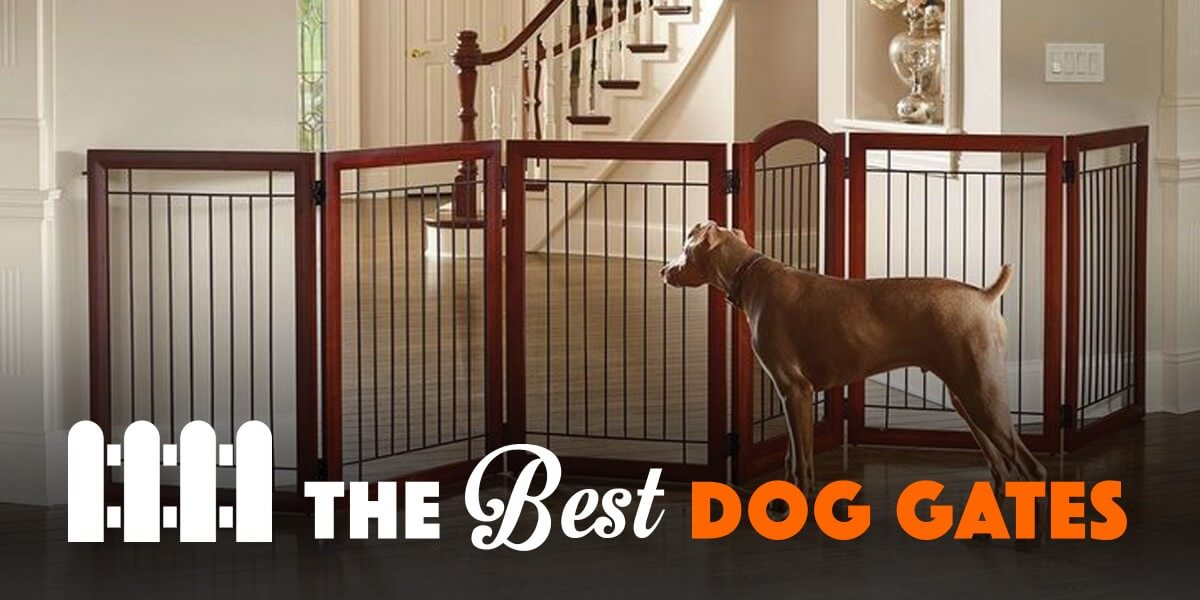 5 Best Dog Gates For Indoor Use Amp Staircases 2018 Reviews