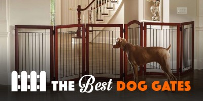 10 Best Dog Gates For Indoor Use & Staircase