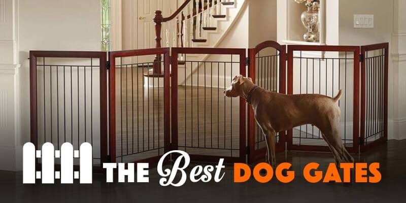 5 Best Dog Gates For Indoor Use & Staircases — 2017 Reviews