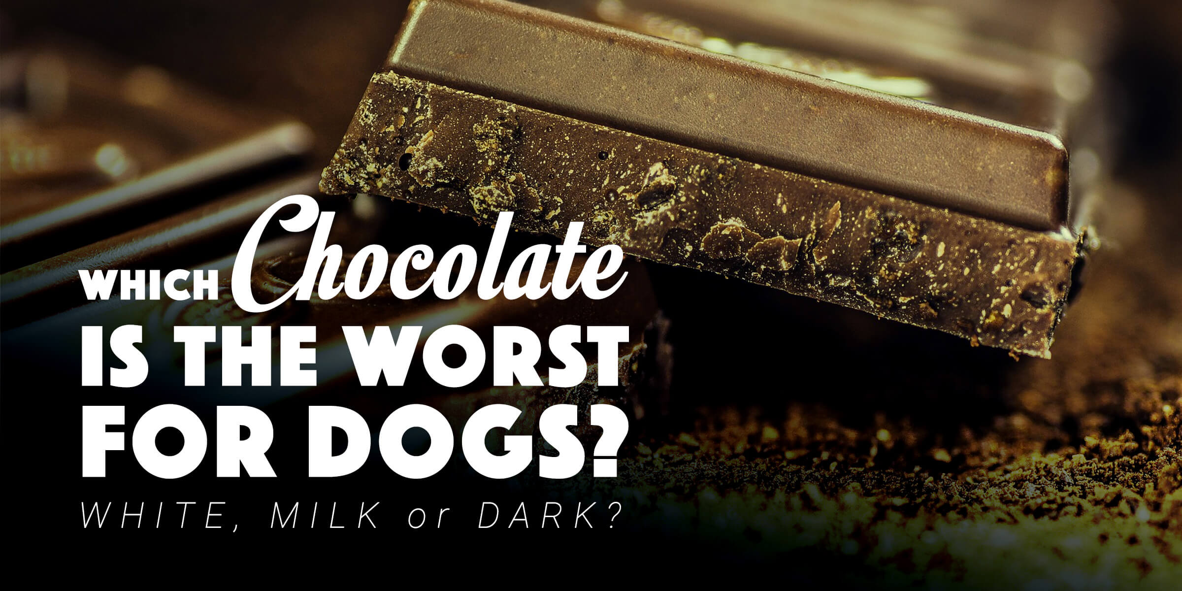 Is Dark Chocolate Or Milk Chocolate Worse For Dogs