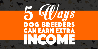 5 Ways Dog Breeders Can Earn Extra Income Online