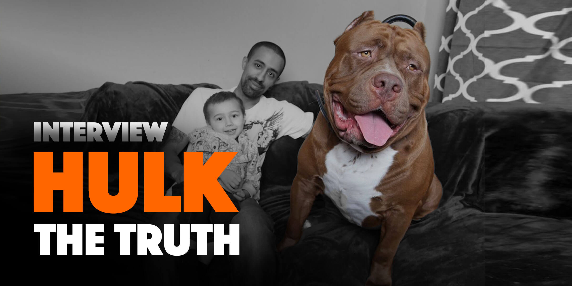 Dark Dynasty K9 Tell The Truth About Their Famous Hulk