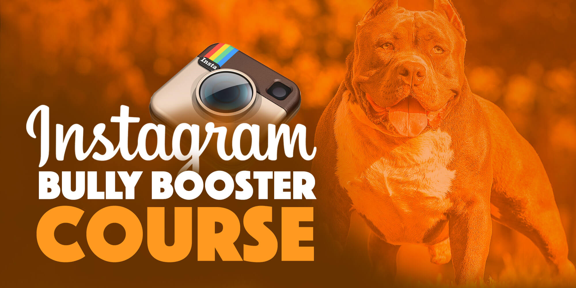 Insta Bully Booster Course