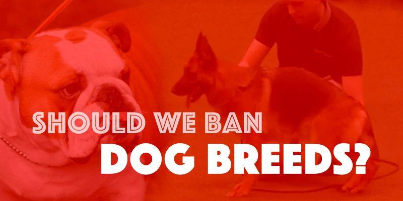 should we ban dog breeds
