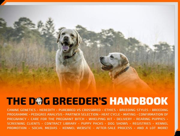 the dog breeder's handbook