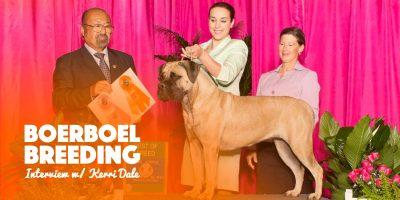Boerboel Breeding Kerri Dale American Boerboel Club