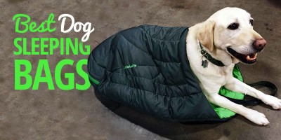 Dog Sleeping Bag – Buying Guide and Best Reviews