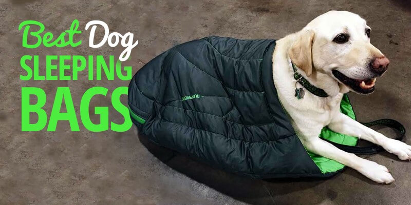 3 Best Dog Sleeping Bags – Reviews & Buying Guide