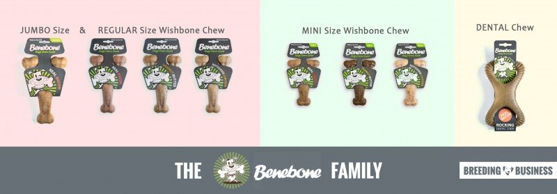 Benebone Review: full range of chew toys products