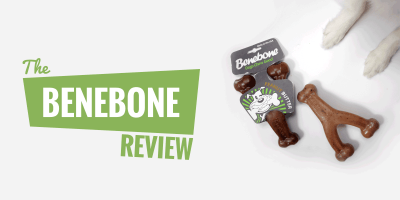 Benebone Review — Flavored Wishbone Chew Toys