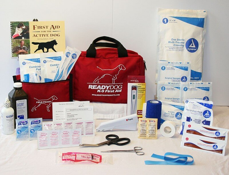 How To Assemble A Perfect Canine First Aid Kit You Can Use